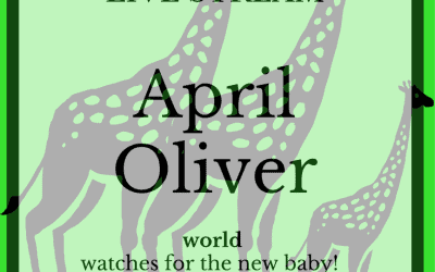 April and Oliver are Expecting… very very soon!!